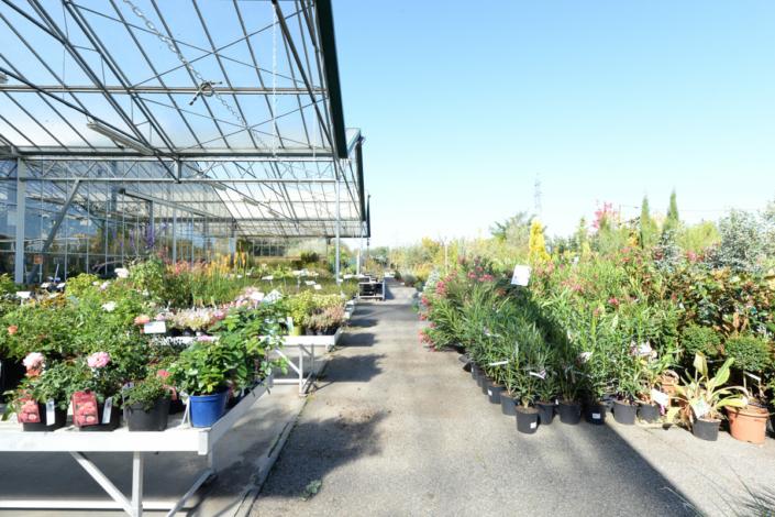 Fleurissez et cultivez - Jardinerie Clarac